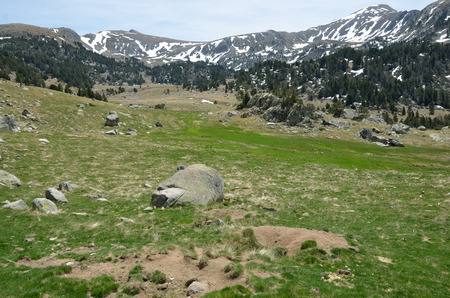 burrows: In the upper part of the Vall-de-Madriu-Perafita-Claror there are the high-altitude valleys with green meadows.