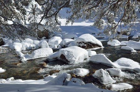 bank activities: Ice-free stream is running along the banks covered with snow. The branches of coniferous trees overhang.