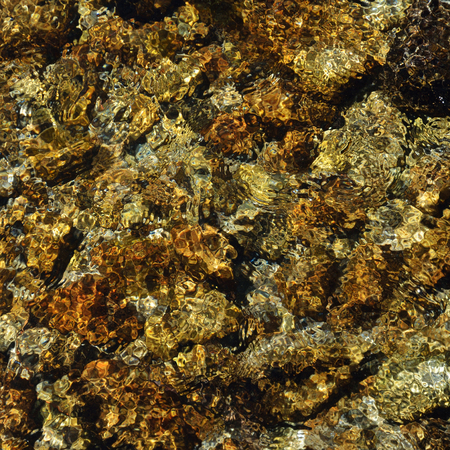 wavelet: Mountain stones are seen through the clear water flowing.
