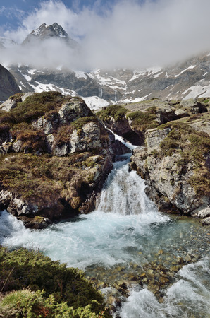 rapidly: The mountain stream is rapidly flowing between the mossy rocks from the cirque of Troumouse.