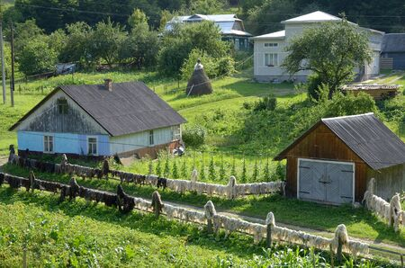 pigpen: Typical village with wooden houses, outbuildings and dried fleece on the fence in the Carpatian Mountains