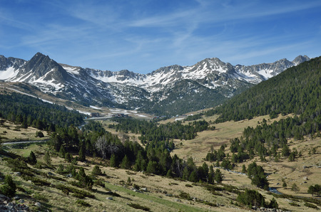 tourism in andorra: Mountain slope with the evergreen forest and snow-covered peaks of the remote ridge
