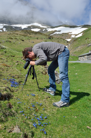 rack mount: A tourist is taking photo the spring blue gentians on the green slope in the spring valley.