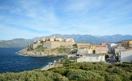 rocky mountain juniper: Calvi is a small town located in the large sheltered bay and the mountains behind. It is combines a historic town and a port.