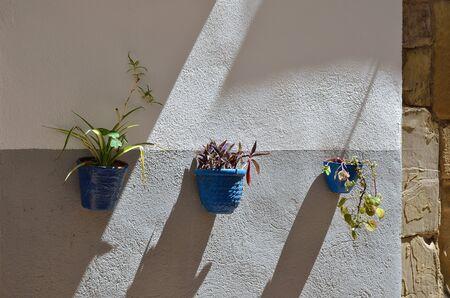 スペインの町のコンクリートの壁には、観葉植物を持つ3つの植木鉢があります。