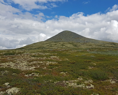 Barren mountain covered with lichen and moss with gentle slopes in the Rondane National Park