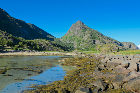 Low tide in the bay under the mountain overgrown with verdure of the Lofoten island Arsteinen