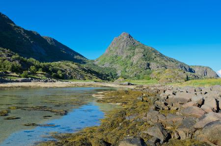 Low tide in the bay under the mountain overgrown with verdure of the Lofoten island Arsteinen