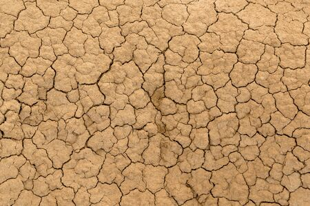 Clay sandy earth parched and cracked