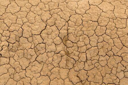 Lehmsanderde ausgetrocknet und rissig