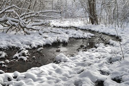 A small mountain stream in a snowy forest in the Crimea photo