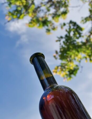 A bottle of wine on the background of sky and branches photo