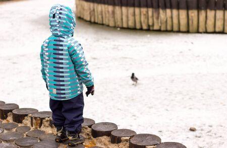 niño caminando en un parque de invierno, se detuvo a mirar a un pájaro que camina sobre el lago congelado