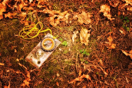 Landmark in the spring forest beauty of nature bright compass lies on the ground in the spring forest, the necessary device for hikes