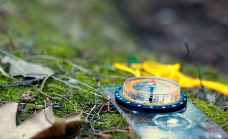 A compass on the moss in the woods, this is a reference point indicating the direction and directions of the traveler, the beauty of nature, green moss, pine needles