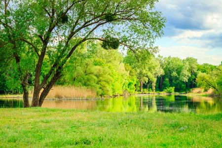 Mooie natuurlijke achtergrond bij de rivier alles wordt weerspiegeld in schoon water op straat. Warmte is een geweldige plek om buiten de stad te ontspannen.