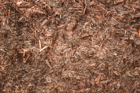 beautiful texture of wood shavings with dark edges and bright center industrial background for design
