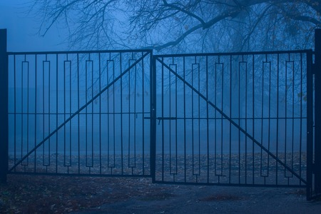 old metal gates and evening street covered with thick fog on the ground lies the fallen autumn foliage mysterious atmosphere of anyone around 스톡 콘텐츠