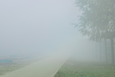 the morning thick fog covered the city with an asphalt road leading to it a mysterious atmosphere 스톡 콘텐츠