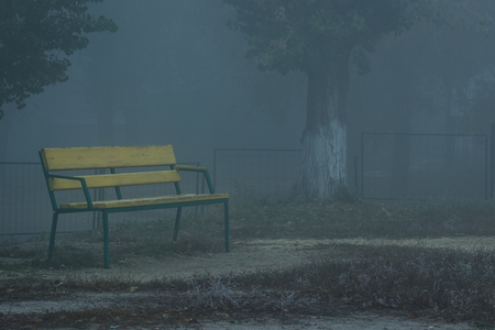 lonely yellow bench for sitting in the evening against the background of thick fog covering the street cityscape weather concept