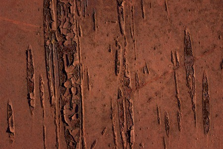 artistic and mysterious rust metal sheet exciting patterns background for design metalworking concept 版權商用圖片
