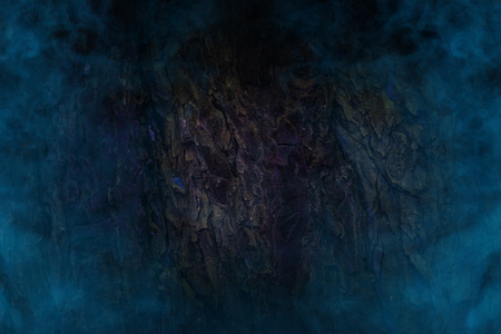 blue ghostly mist covered tree trunk close up concept mystics and nature background for design