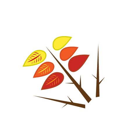 colorful autumn leaves on a sharp wooden branch natural patterns for design