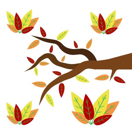 branch of a tree with colorful autumn leaves growing on it concept of nature and the golden season