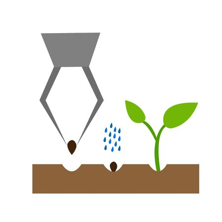 planting grain in the soil by watering and growing a sprout concept of agriculture and horticulture Ilustração