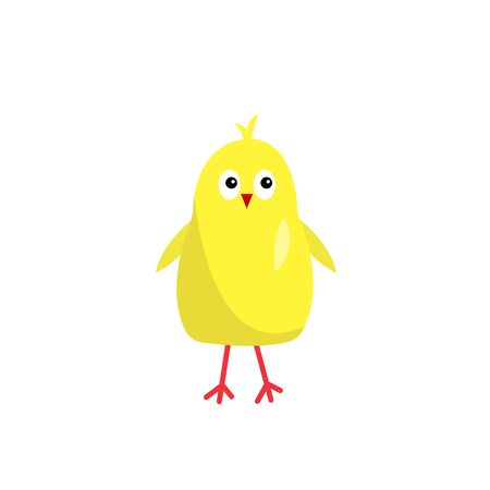 yellow chick with a red beak cute cartoon character for design on a white background pet cub chicken