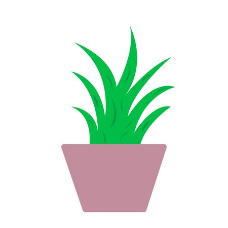 plant in a pot on a white background object for design concept of gardening and nature Stock fotó - 137886362