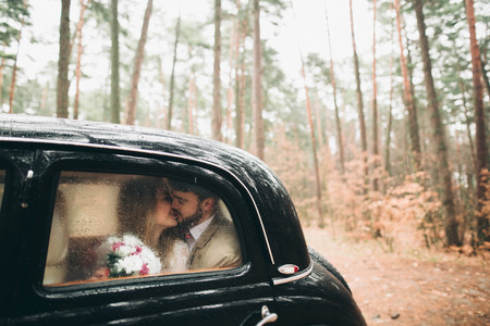 Gorgeous newlywed bride and groom posing in pine forest near retro car in their wedding day.