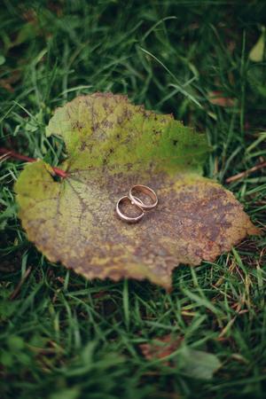 gold rings: luxury wedding rings with stylish decoration near them.