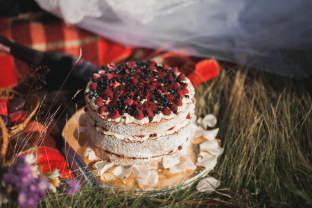 nature natural: Beautiful wedding couple at picnic with fruit and cake on a background of mountains.