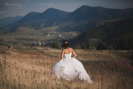 decollete: Gorgeous bride in elegant dress posing in the sunny summer day on a background of mountains.
