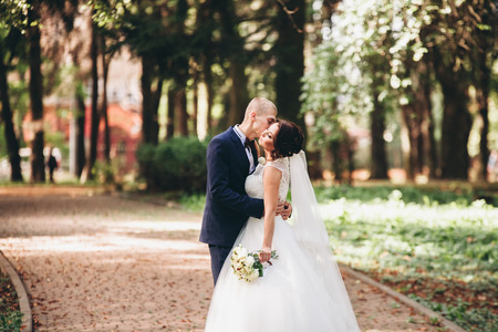 marrying: Happy wedding couple, bride and groom kissing in park. Stock Photo