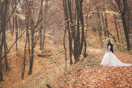 Happy wedding couple, bride and groom in the autumn forest, park.