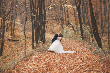 Happy wedding couple, bride and groom kissing in the autumn forest, park.
