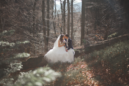 Gorgeous wedding couple in forest