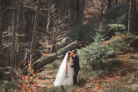 Gorgeous wedding couple kissing and hugging in forest with big rocks.