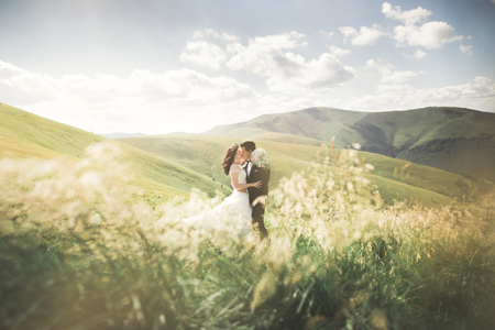 Kissing wedding couple staying over beautiful landscape. 免版税图像