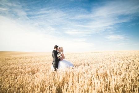 happy wedding: Beautiful wedding couple, bride and groom posing on wheat field with blue sky. Stock Photo
