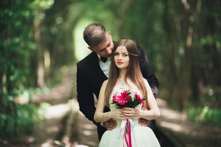 Romantic newlywed couple kissing in pine tree forest