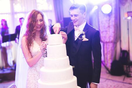 Bruid en bruidegom bij het trouwen van de bruidstaart Stockfoto
