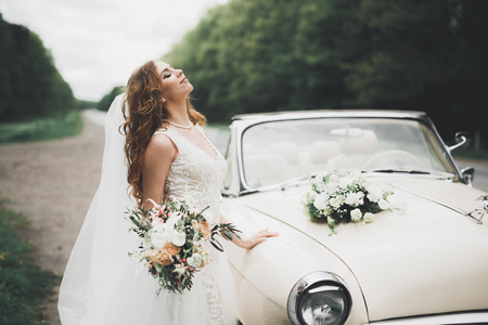 Happy bride in the retro car posing on her weeding day 免版税图像