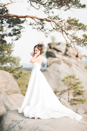 Beautiful bride posing near rocks against background the mountains Stock Photo