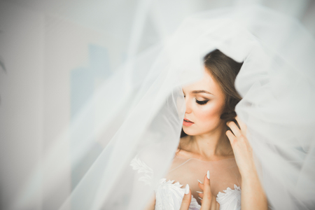 Gorgeous bride in robe posing and preparing for the wedding ceremony face in a room Standard-Bild
