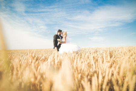 Beautiful wedding couple, bride and groom posing on wheat field with blue sky 免版税图像