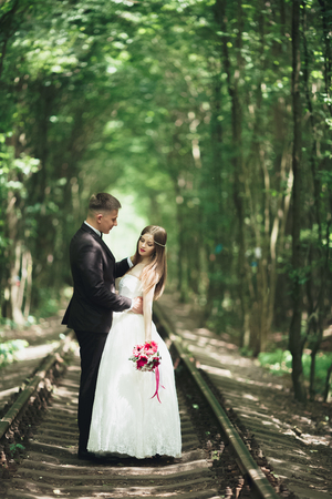 Happy wedding couple charming groom and perfect bride posing in park Stock Photo