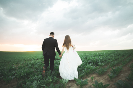 Lovely wedding couple, bride and groom posing in field during sunset